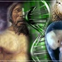 Con Ciencia se Derrumba La Teoria de  Darwin.
