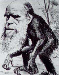 Teoría de Darwin es un Completo Fraude