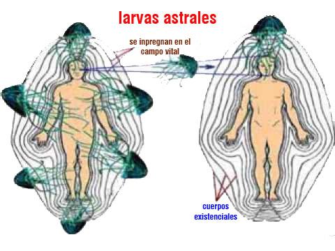 larbas astrales