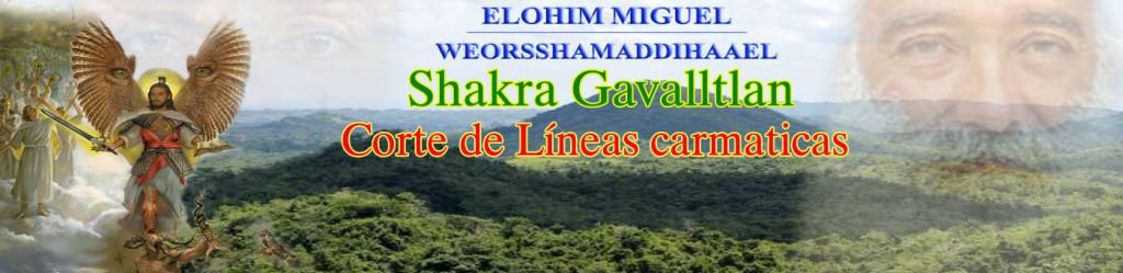 Elohim Miguel Chakra Gavalltla