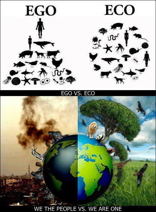 ego-vs-eco1