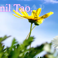 El TAO y el cambio genético