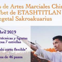 TERSER SEMINAKUARIO DE ARTES MARSIALES CHINAS Y PRELIMINARES NTD.